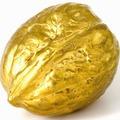 Golden_Nut's avatar