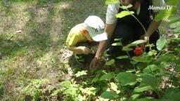 Учим ребенка бережному отношению к природе