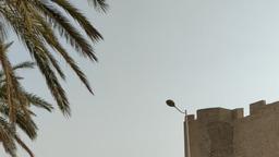 Тунис. Монастир.